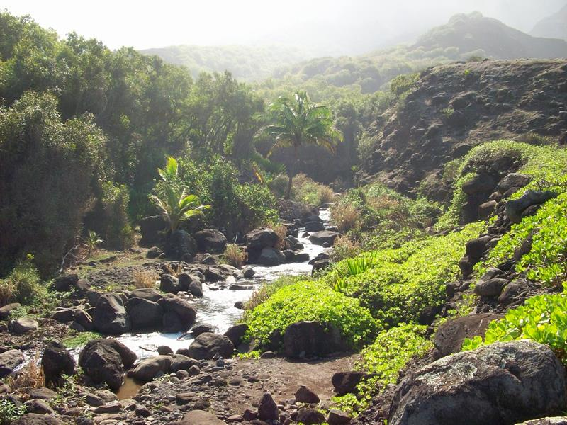 24 Spine-Tingling Pictures from Hawaii's Most Dangerous Hiking Trail-022
