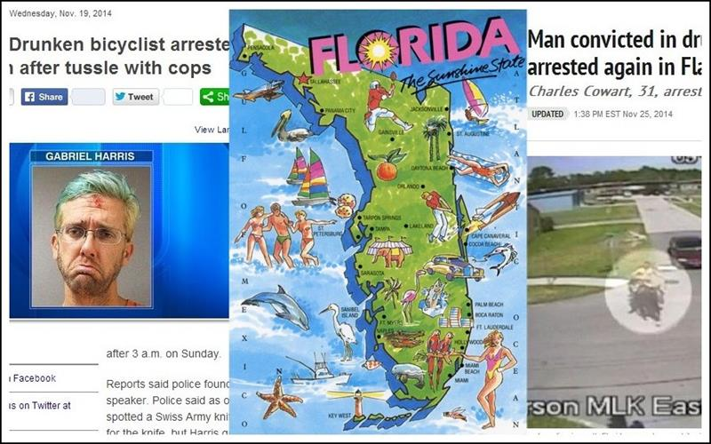 25 Reasons Florida is the Craziest-title