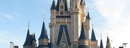 50 Must-See Things at Disney World