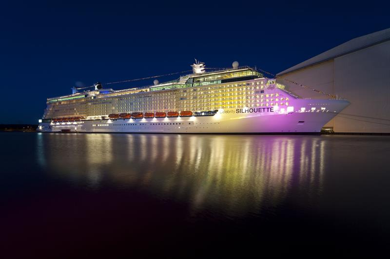 31 Stunning Pictures of the Celebrity Silhouette-2