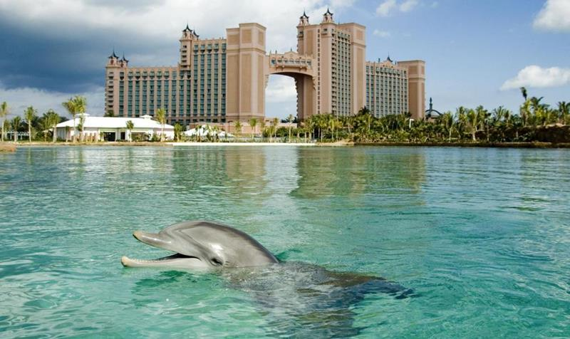 25 Stunning Pictures from the Atlantis Resort in the Bahamas-8