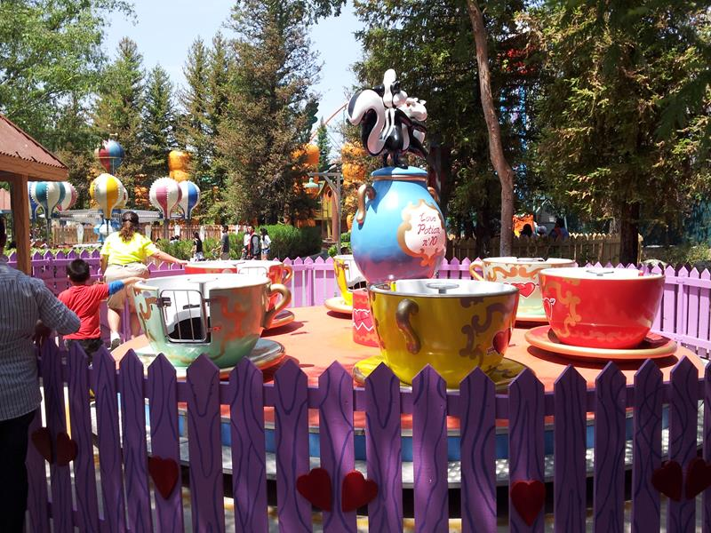 35 Pictures from Six Flags Magic Mountain-6