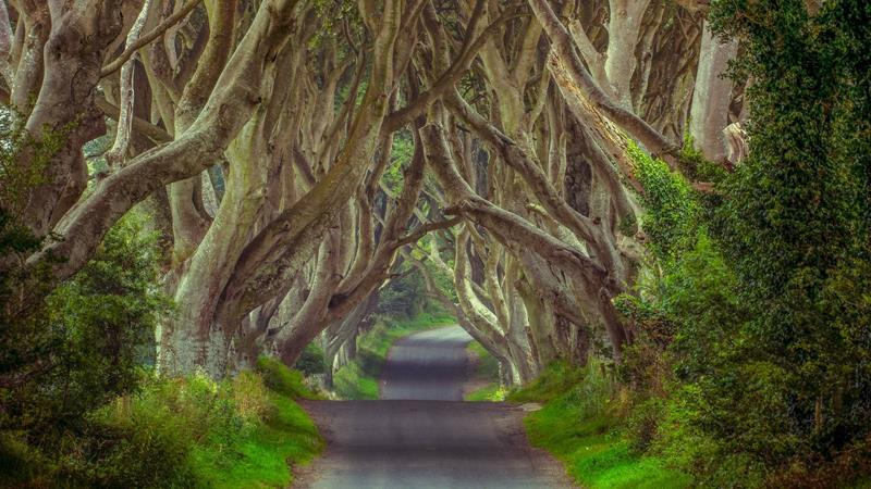 21 Real Places That Are Straight Out of a Story Book-12