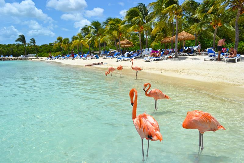 17 Beaches To Visit While In Aruba-15