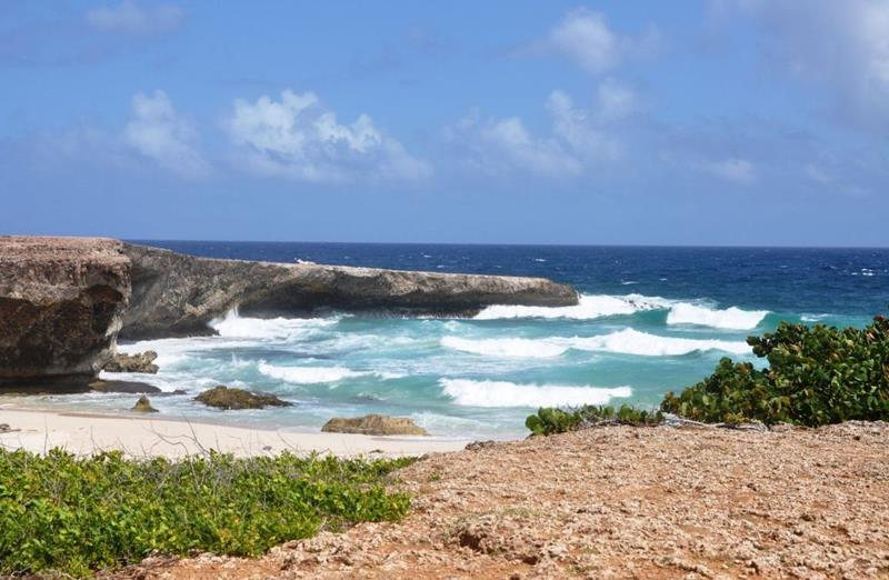 17 Beaches To Visit While In Aruba-6