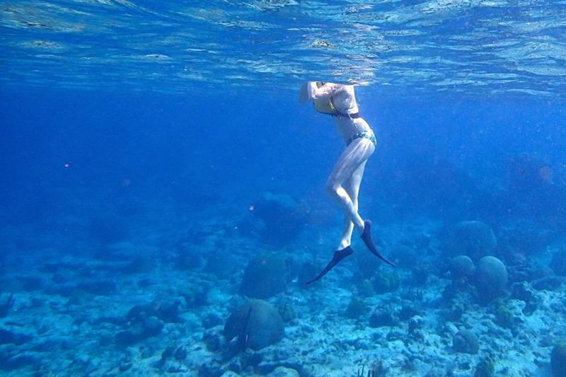 24 Best Snorkeling Spots in the Caribbean-7
