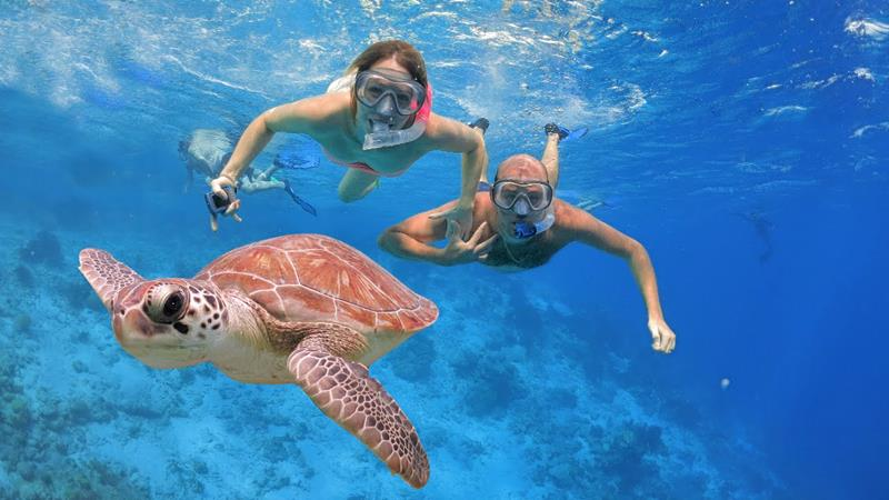 24 Best Snorkeling Spots in the Caribbean-title