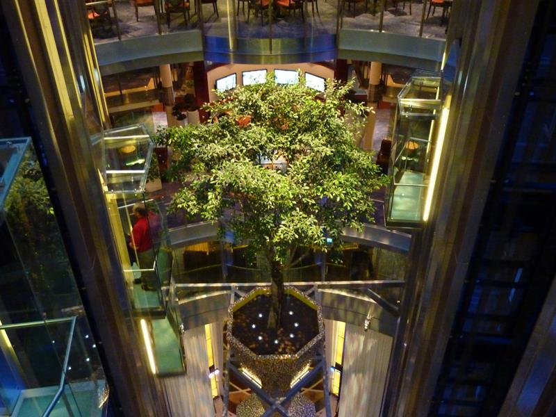 22 Pictures of the Amazing Celebrity Equinox-2