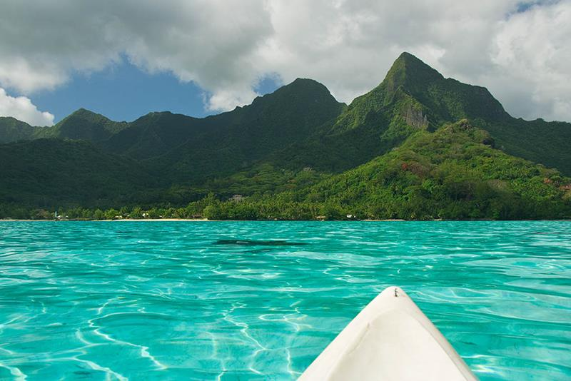 Moorea (French Polynesia), from a kayak in the lagoon near Haapiti 9/08