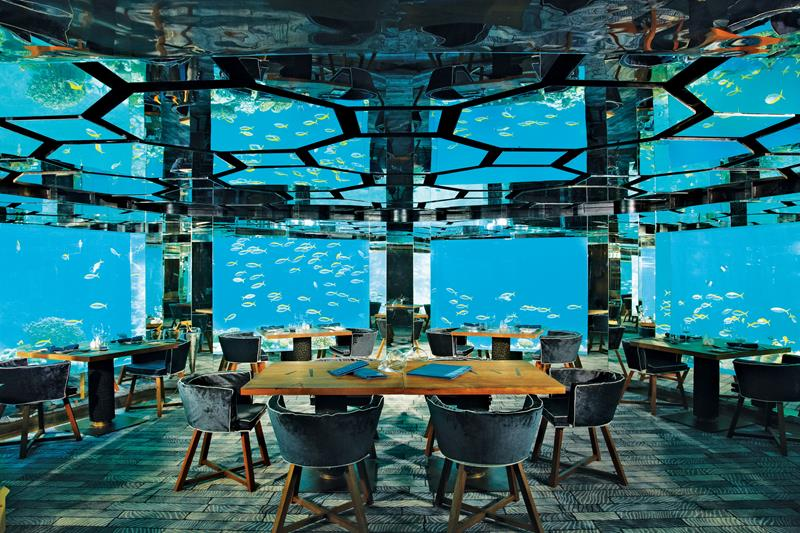 the-10-coolest-underwater-hotels-in-the-world-7