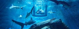 The 10 Coolest Underwater Hotels in the World