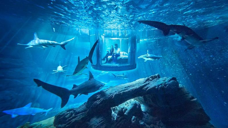 the-10-coolest-underwater-hotels-in-the-world-title